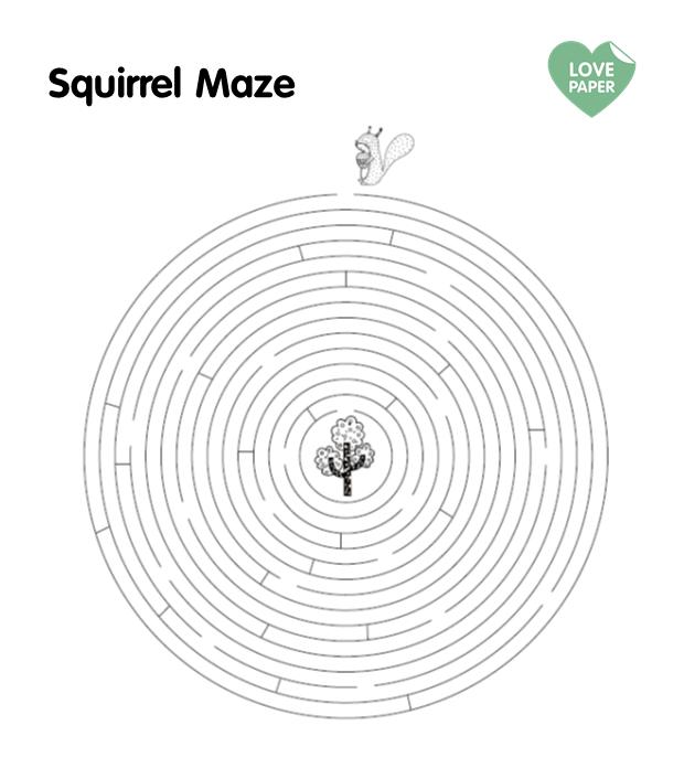 squirel-maze