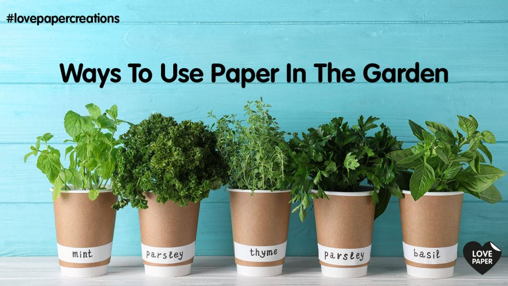 Ways to use paper in the garden
