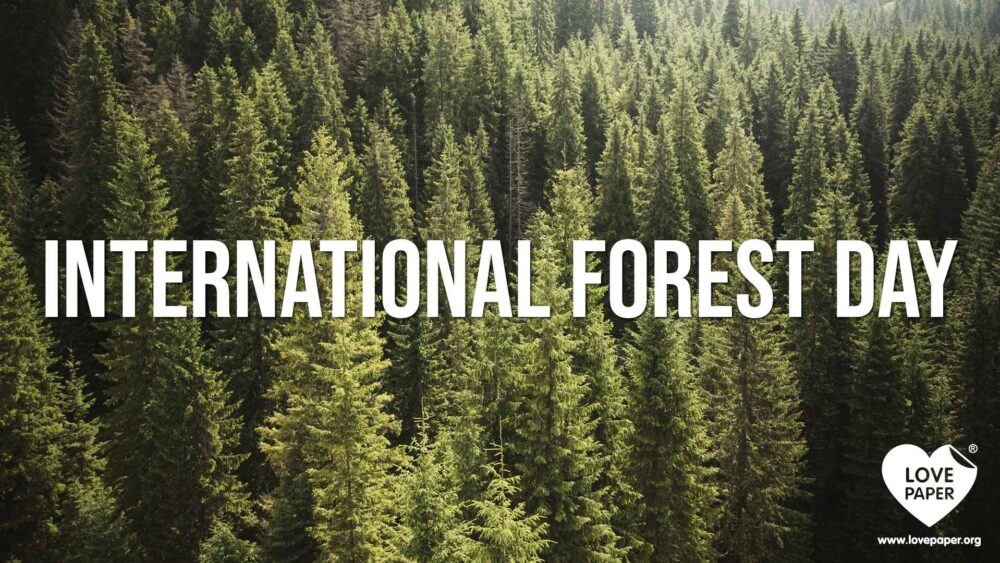 International Forest Day