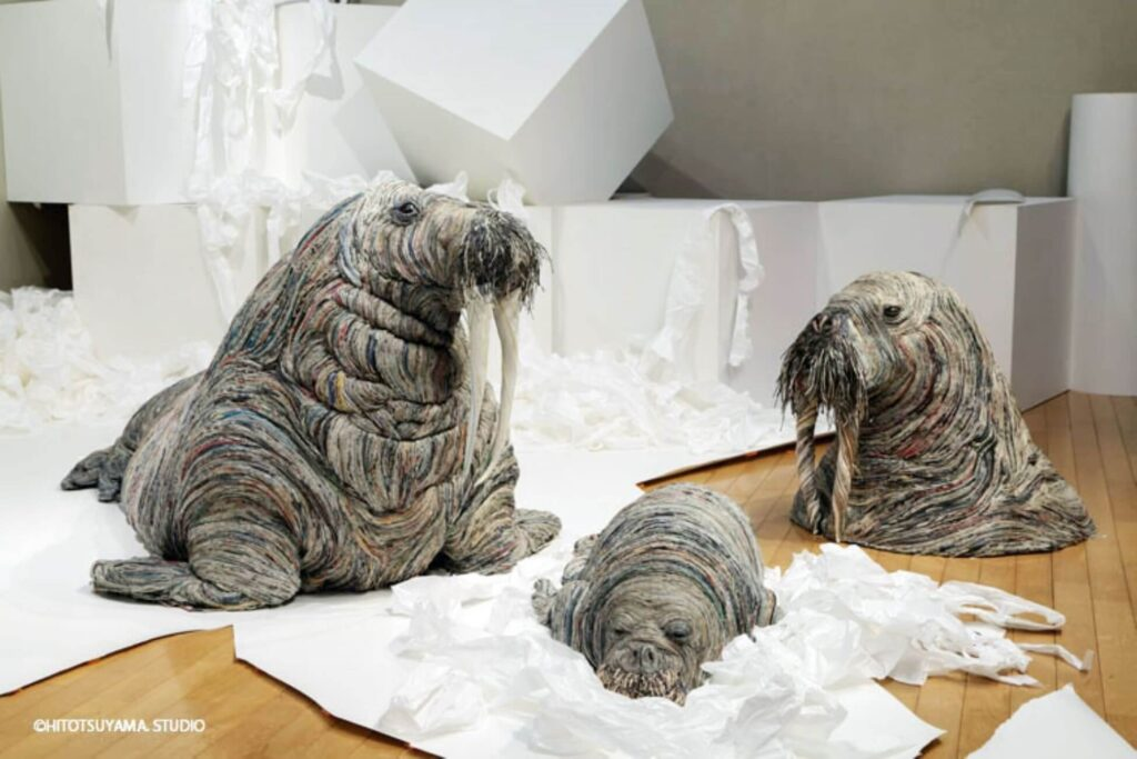 Chie Hitotsuyama Walrus'